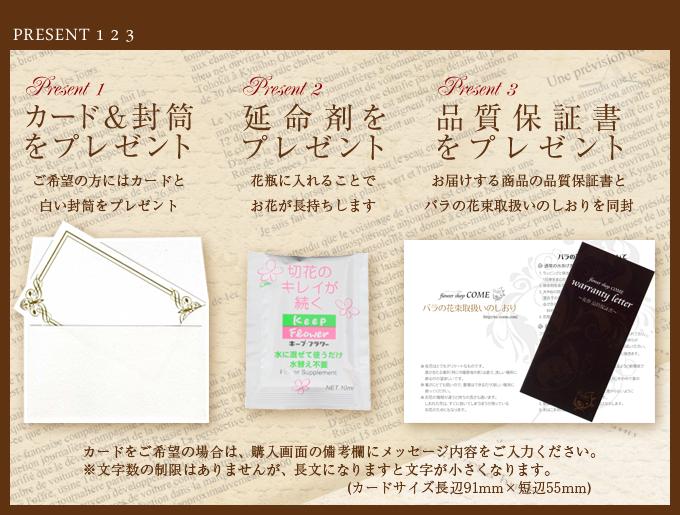 今だけ限定無料で3つプレゼント(カード&封筒・延命剤・品質保証書)