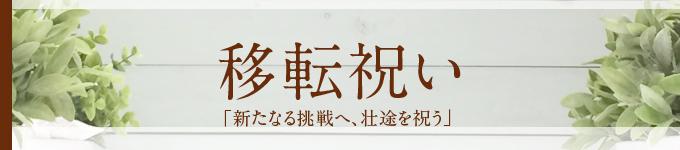 ◆移転祝い◆当店おすすめ胡蝶蘭~新鮮・安心・高品質をお求めでしたらフラワーショップ花夢にお任せください