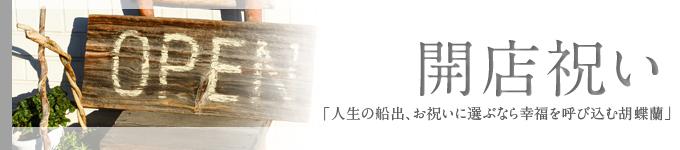 ◆開店祝い◆当店おすすめ胡蝶蘭~新鮮・安心・高品質をお求めでしたらフラワーショップ花夢にお任せください