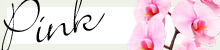 ピンクの胡蝶蘭の特集ページはこちら