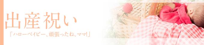 ◆ご出産祝い◆当店おすすめ胡蝶蘭~新鮮・安心・高品質をお求めでしたらフラワーショップ花夢にお任せください