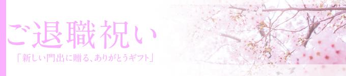 ◆退職祝い◆当店おすすめ胡蝶蘭~新鮮・安心・高品質をお求めでしたらフラワーショップ花夢にお任せください
