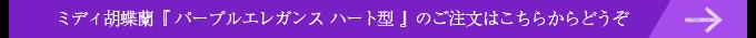 リング型紫のミディ胡蝶蘭(パープルエレガンス)はこちらから