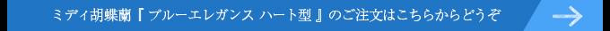 ハート型紫のミディ胡蝶蘭(ブルーエレガンス)はこちらから
