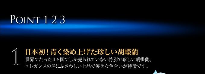 日本初!青く染め上げた珍しい胡蝶蘭