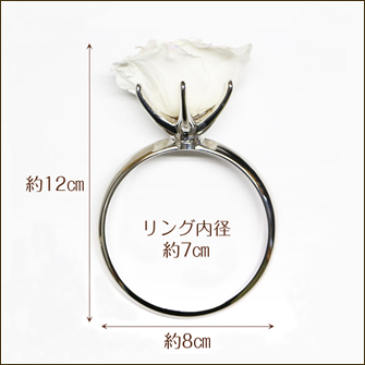 指輪の横からのサイズの写真 高さ約12cm、横約8cm、リング内径約7cm