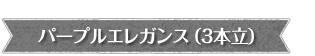 パープルエレガンス【紫の胡蝶蘭】卒業入学歓送迎にオススメ