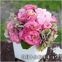 季節の花を使ったアレンジメント
