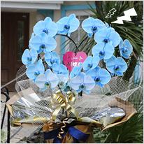 青い胡蝶蘭ブルーエレガンス[ハート型大輪]