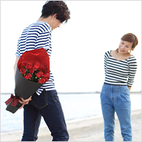 赤い煌薔薇(きらめきばら)