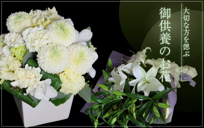 供養のお花特集
